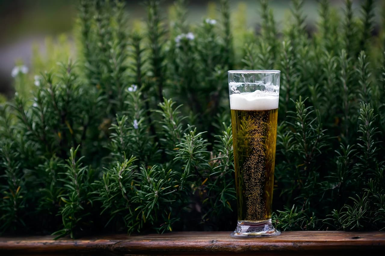 investissement dans le marché de la bière française